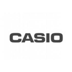 Casio horlogeband 10101121 Staal Zilver 18mm